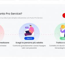 Punto Pro Service